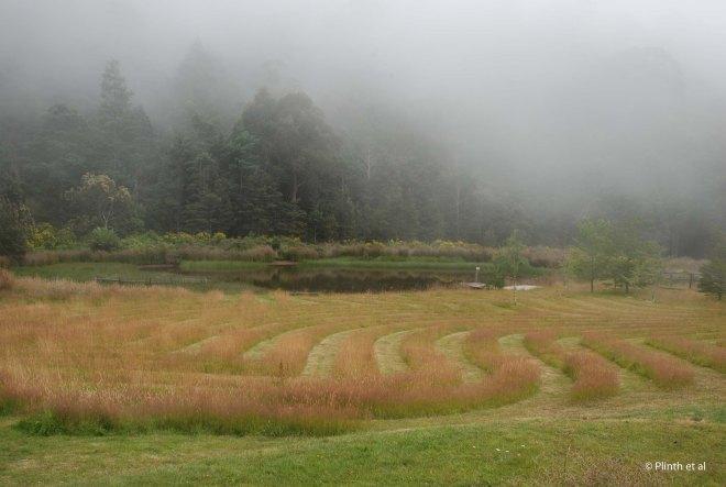 Mown Turf Pattern in a private Tasmanian garden