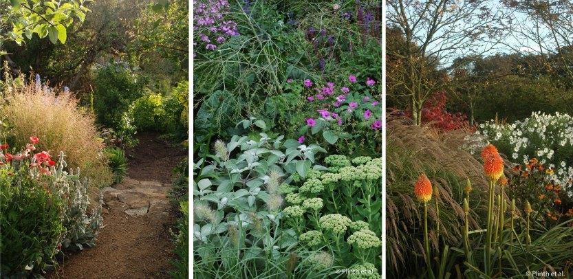 Left to right: Deschampsia cespitosa, private garden in Tasmania, Australia; Pennisetum villosum in Condicote, near Moreton-on-Marsh, United Kingdom; Miscanthus sinensis 'Yakushima', Pettifers, United Kingdom