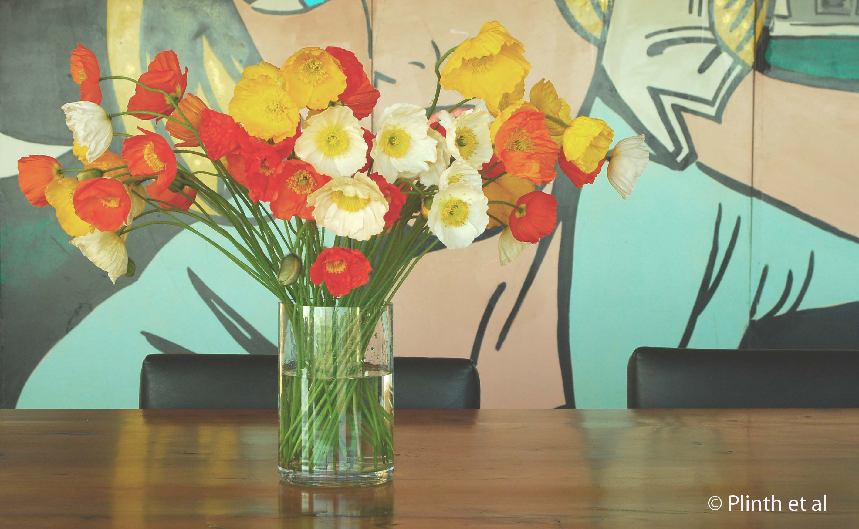 Poppies plinth et al cut iceland poppies stand out against the pop art painting private home tasmania mightylinksfo