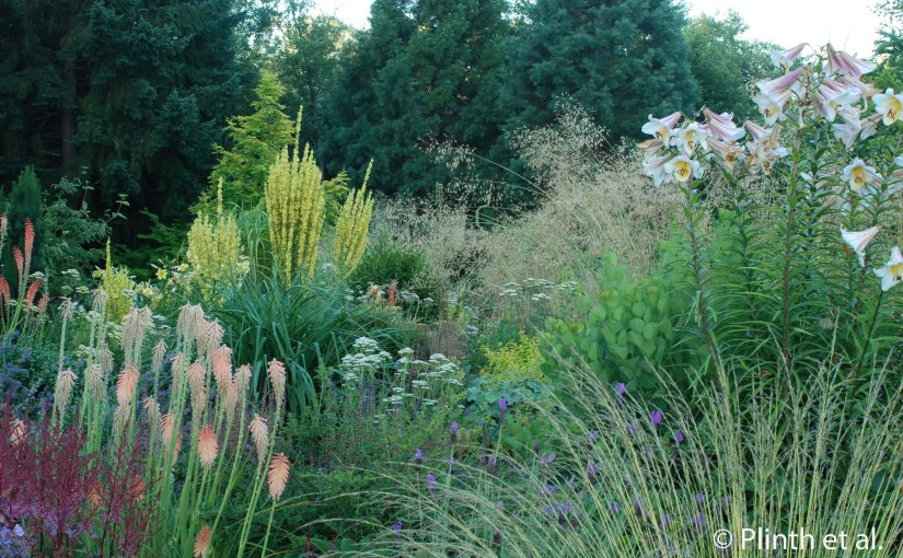 Northwest Perennial Alliance's Perennial Border at Bellevue Botanical Garden