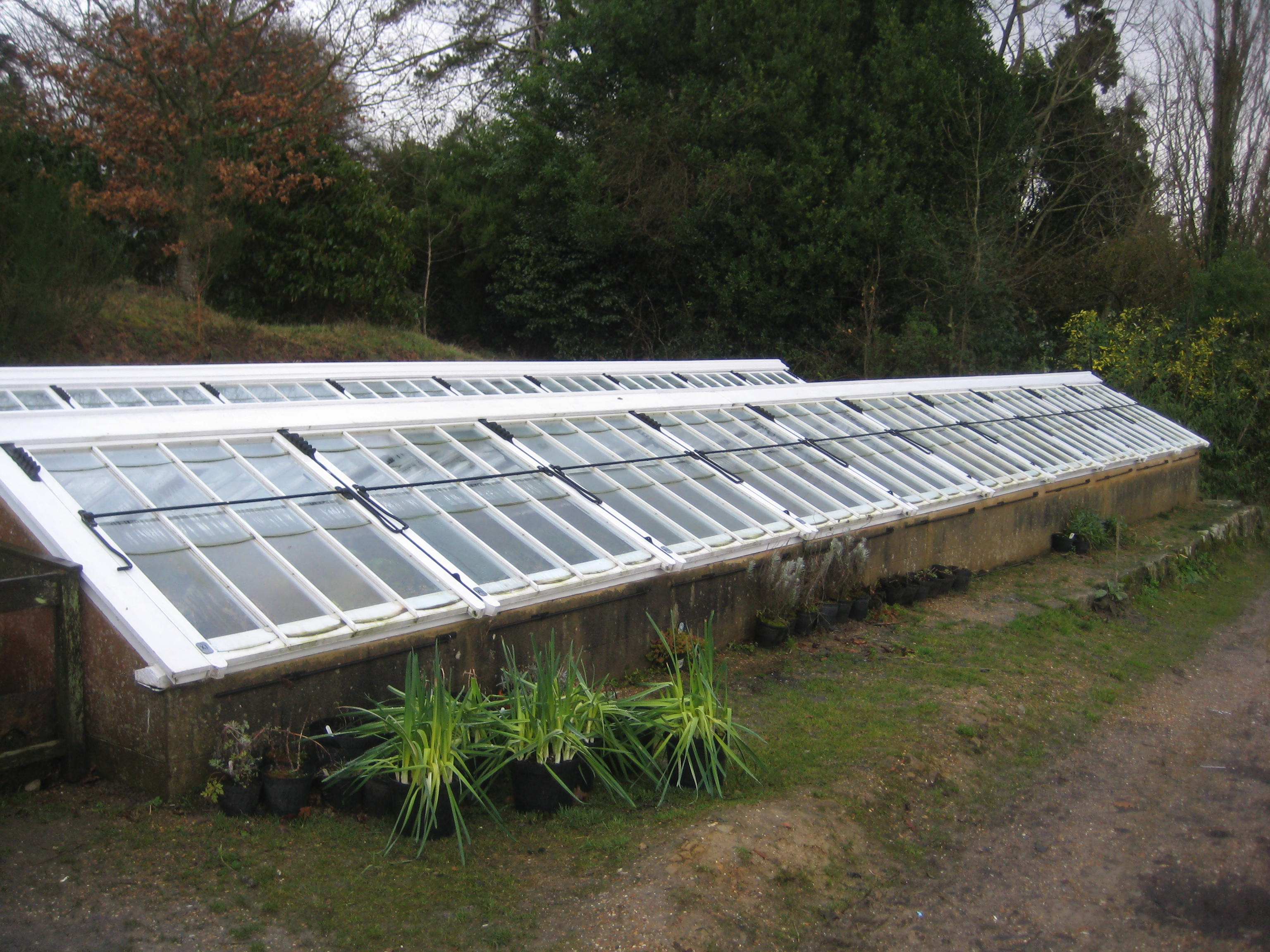 the type of cold frame at gravetye is not that common any more and it is quite a long run and they were the finest design ever produced