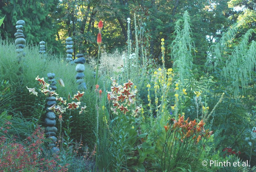 Stacked stone columns add vertical notes, relating to the spires of Verbascum, Lilium 'Sweetheart', and Datsica cannabina (on the right).