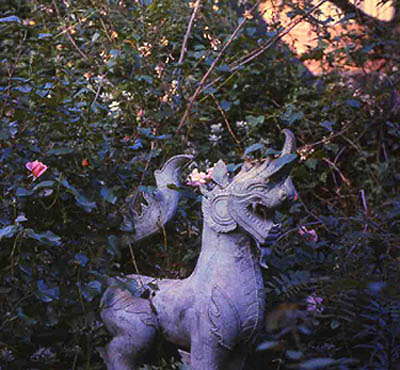 Ming Dynasty-style Dog Sculpture in Mitchell's garden by Nicholas Weber via kind permission of David Neumeyer
