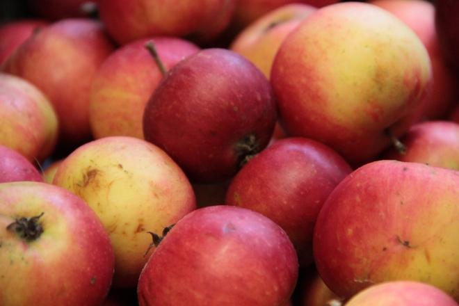Gravetye apples