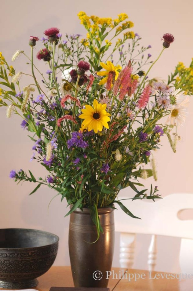 Autumn Bouquet containing Aster 'Photograph', 'Lutetia', and 'Blue Eyes', Helianthus 'Orgyalis', Cirsium rivulare 'Atropurpureum', Solidago rigida, Leucanthemella serotina, Persicaria 'Pink Elephant', Sanguisorba 'Stand Up Comedian' and Sanguisorba 'Blackthorn'