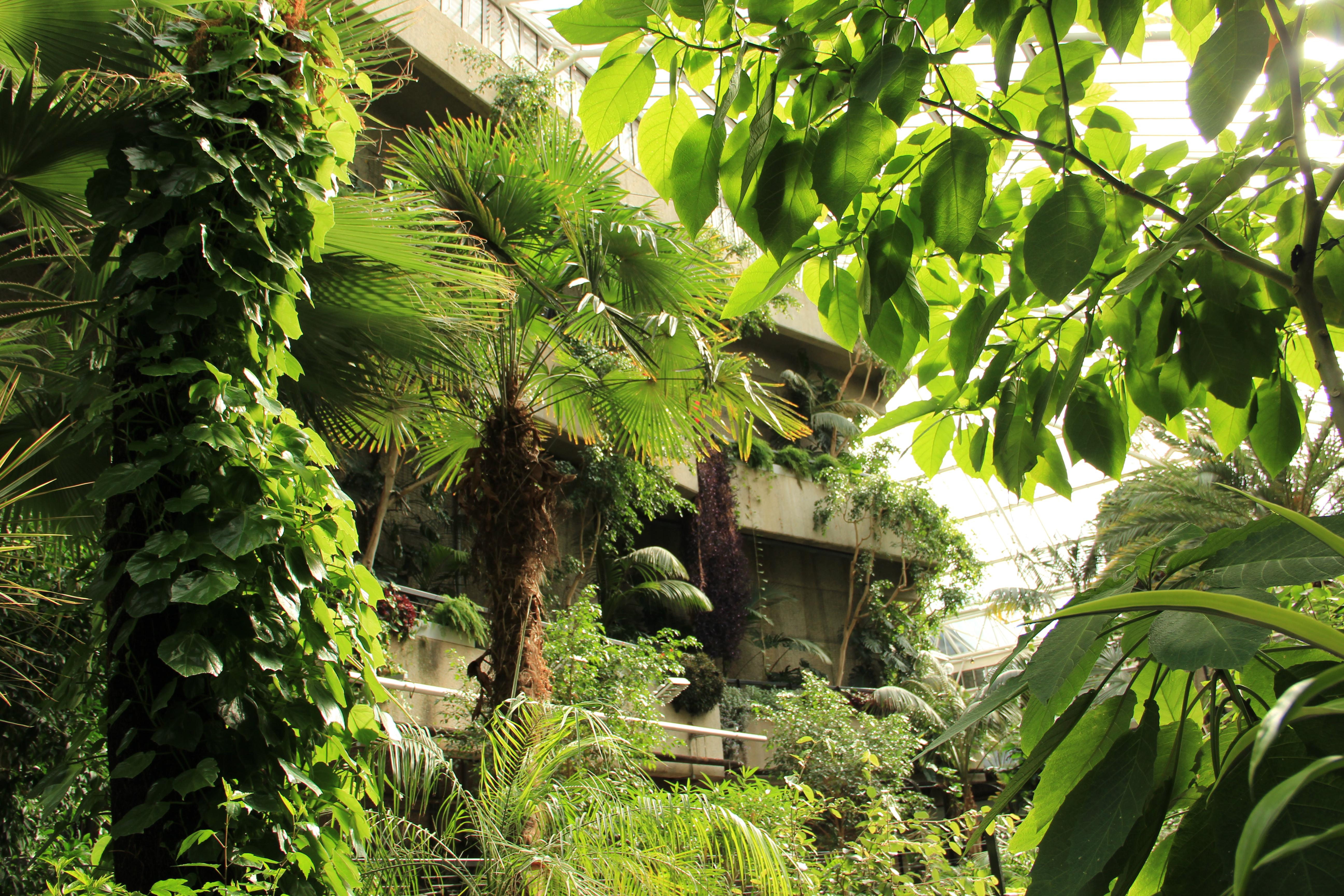 barbican centre s secret garden – plinth et al