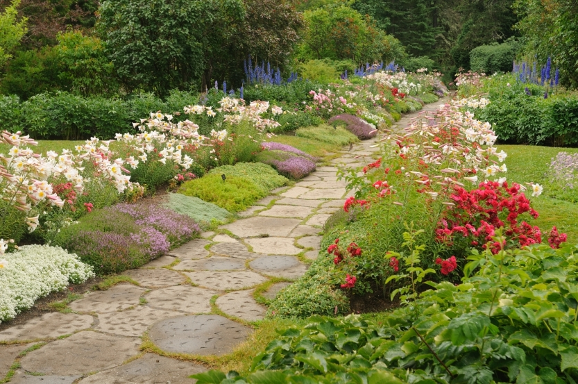 Lilium regale, thyme, and roses line the stone pathway at Reford Gardens, a local favourite of Philippe.