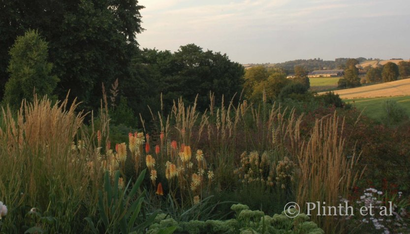 The tawny colors of kniphofias and grasses guide your eye out into the parched fields of the countryside.