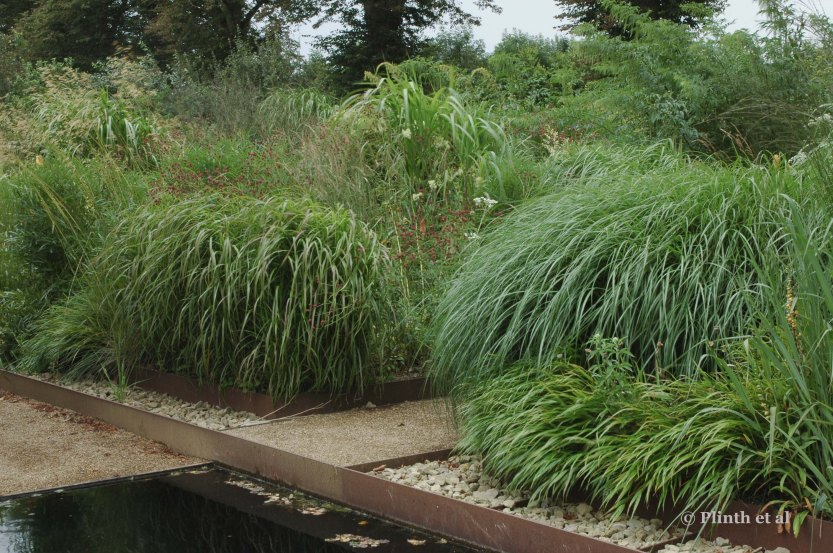 Different grasses, including Miscanthus x giganteus, are mixed together, giving textural unity at different heights.