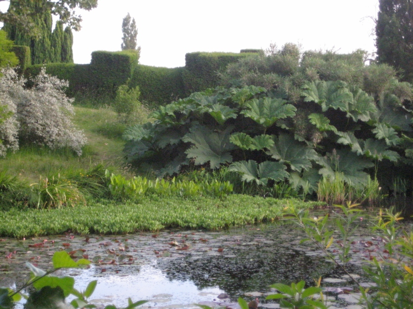 Horse pond at Great Dixter