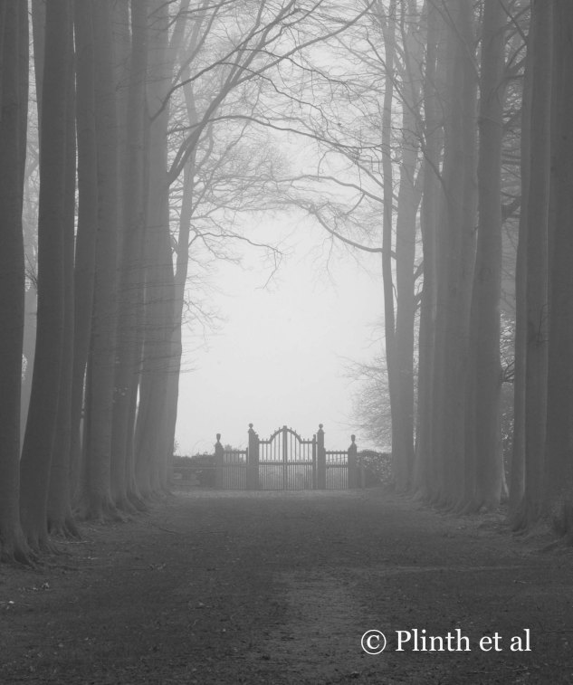 Dwarfed by the beech trees, the gate looks comically out of scale, but forces our eyes to pause and compels to explore beyond its boundaries.