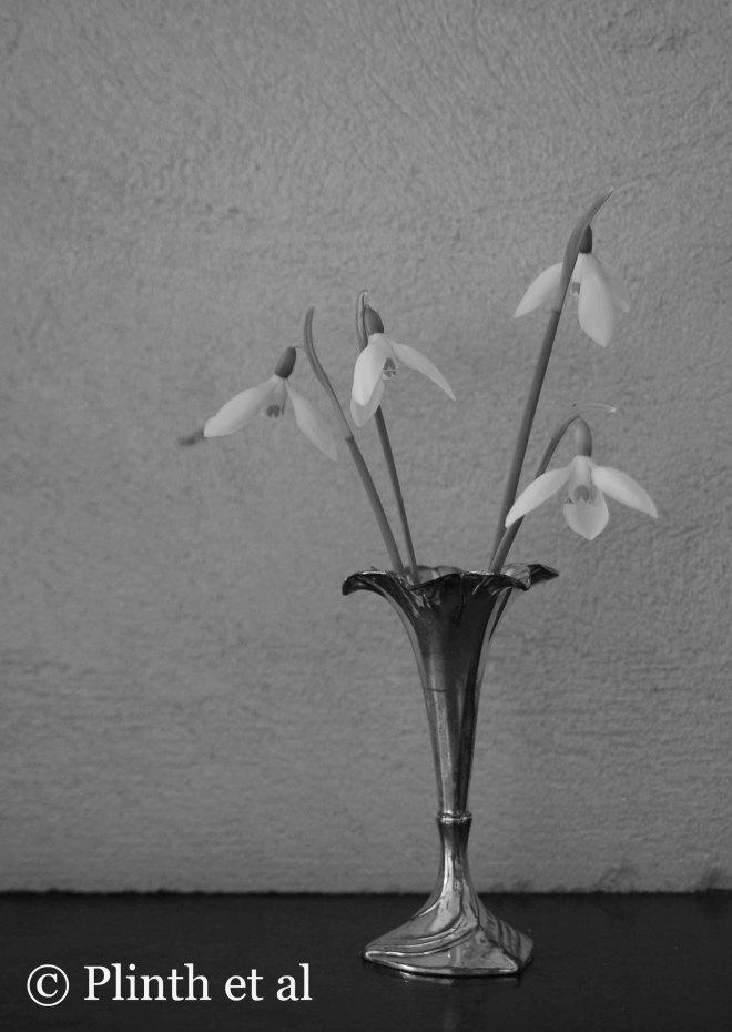 Snowdrops B&W Silver Flute