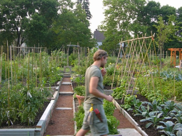 finished student garden at Longwood Gardens, 2006
