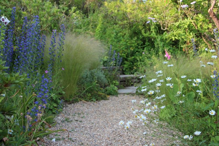 a loose gravel path in the informal Spring Garden at Gravetye Manor, 2013