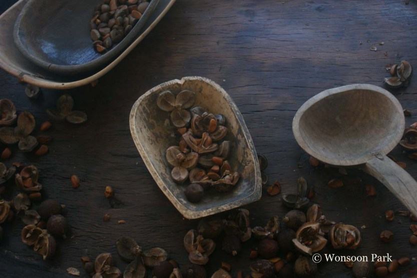 The seeds of Camellia japonica, Wonsoon's desert island plant, yield oil useful in cosmetics.
