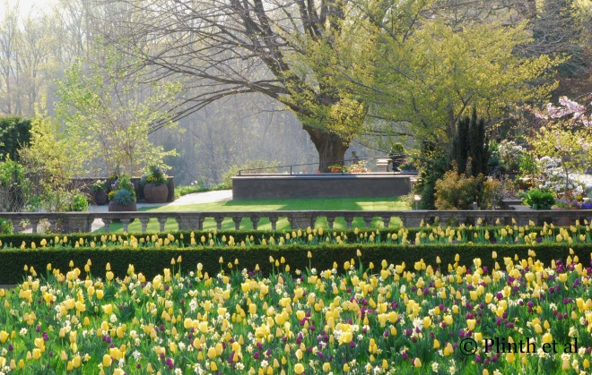 Chanticleer in Wayne, Pennsylvania, is an inspirational garden for Wonsoon who wrote about it in a Korean gardening magazine.