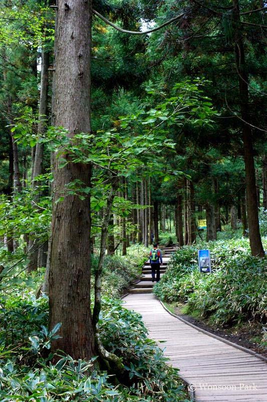 Koreans still enjoy hiking in natural areas.