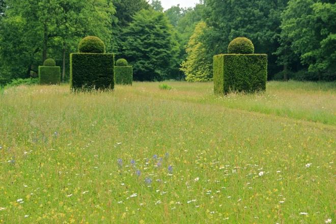 DeWiersse meadow