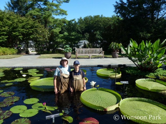 Wonsoon Park and Tim Jennings, Senior Gardener for the Outdoor Water Lily Display, at Longwood Gardens
