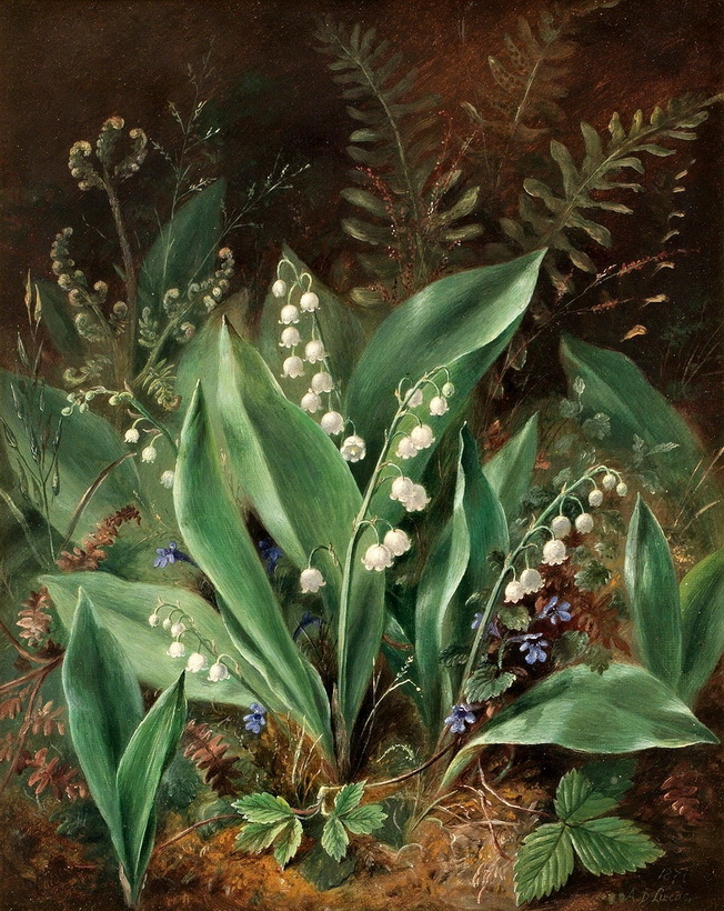 Lucas Albert Durer (1828-1919) ~ Lily of the Valley (Image Credit: windypoplarsroom); Durer successfully evokes the lily of the valley's cultivation conditions - partially shaded woodland conditions that ferns prefer as well.