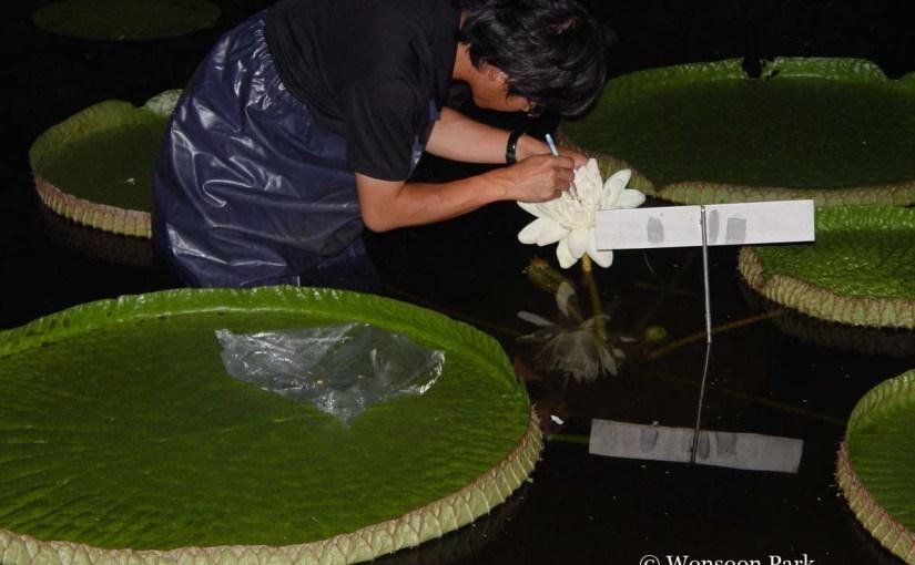 5-10-5: Horticulturist WonsoonPark