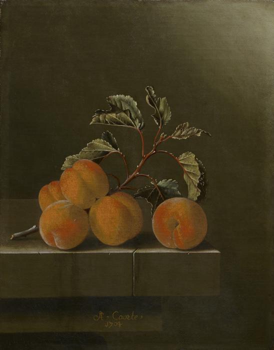 Still Life with Five Apricots, 1704 by Adriaen Coorte (image courtesy of the Frick Collection)