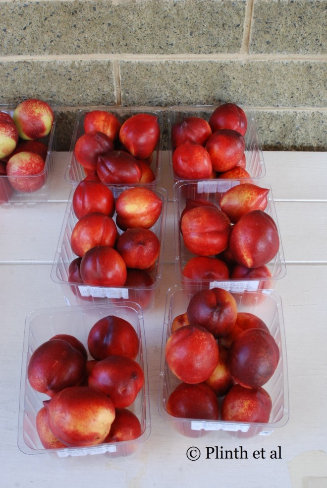 At a farmstand known for its stone fruits, red nectarines seduce the eye with their color as much as the scent for their noses