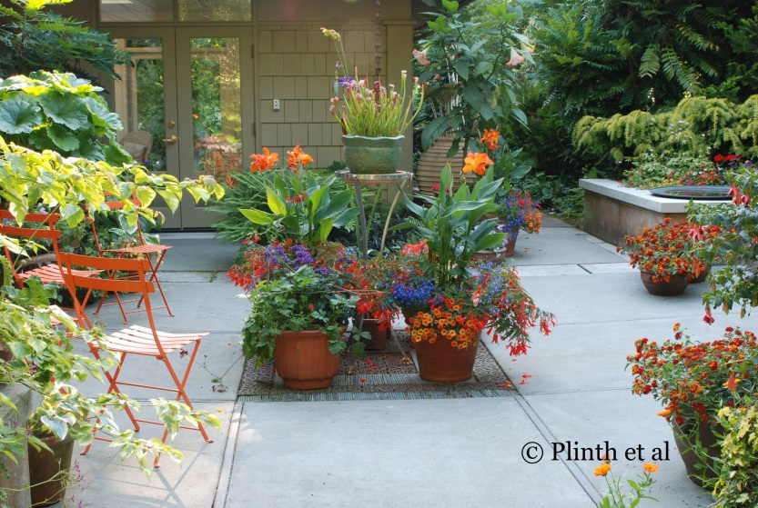 Glen Withey and Charles Price' Curator Garden at Dunn Gardens, Seattle, Washington, shows how unrestrained and vivid annuals can be in containers.