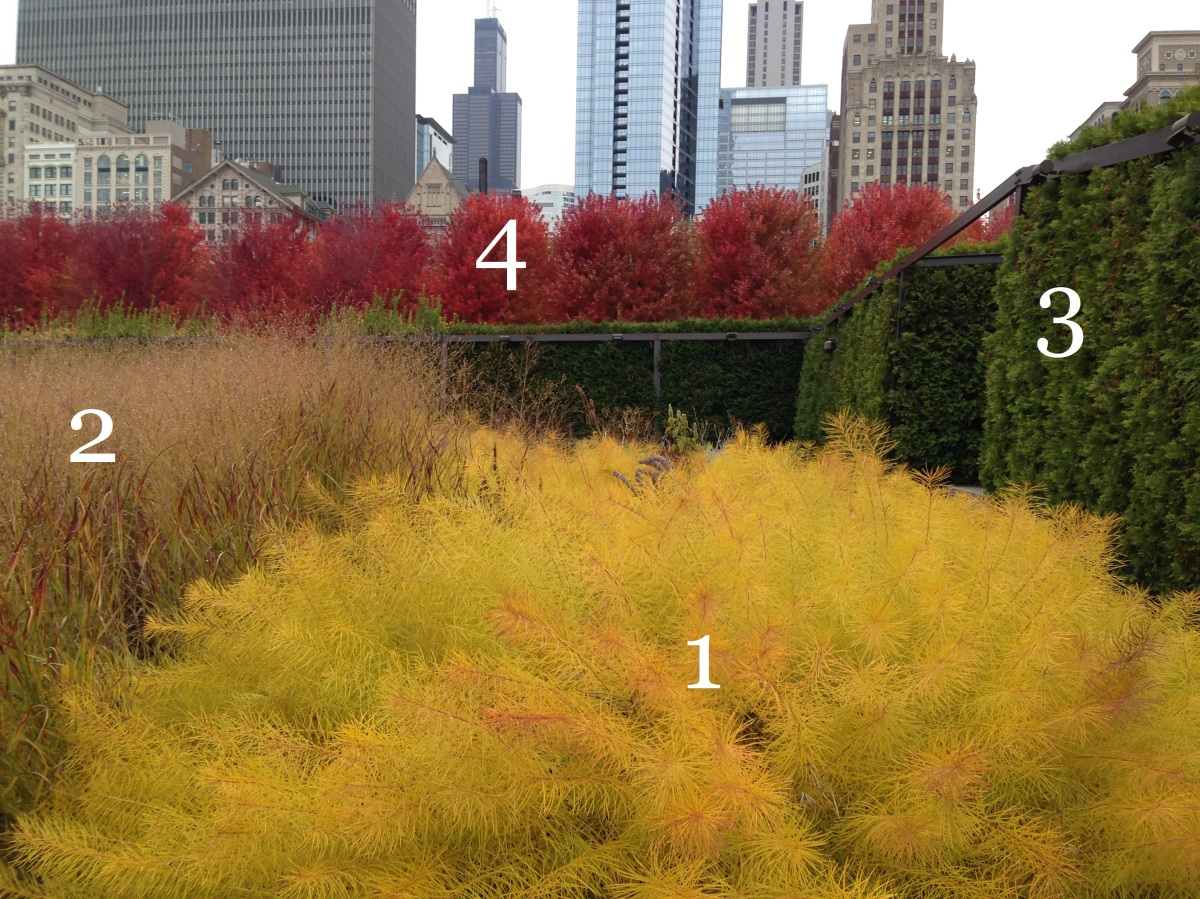 Anatomy of a garden two plantings at lurie garden for Piet oudolf fall winter spring summer fall