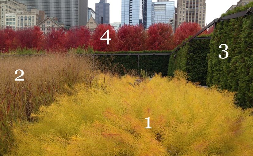 Anatomy of a Garden: Two Plantings at Lurie Garden