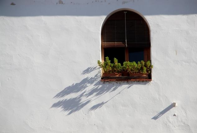 Gardens in Cordoba, Spain