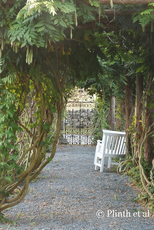 The view towards the gate from the wisteria arbor is the same as it was from Mrs. Ely's time.