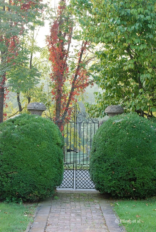 Left unshorn for a long time, the boxwood have acquired oddly rotund shapes that only enhances the garden's character; the Virginia creeper is already showing its beautiful scarlet autumn foliage among the trees. The entire scene conveys the garden's pastoral settling and its age.
