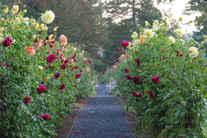 Anatomy of a Garden: MeadowburnFarm