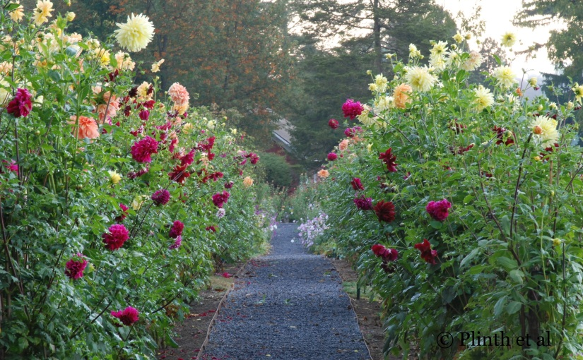 Anatomy of a Garden: Meadowburn Farm