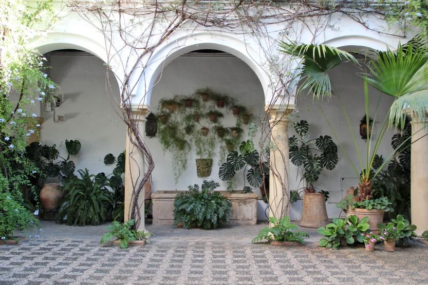 Cordoba, Tuesday's Terrace