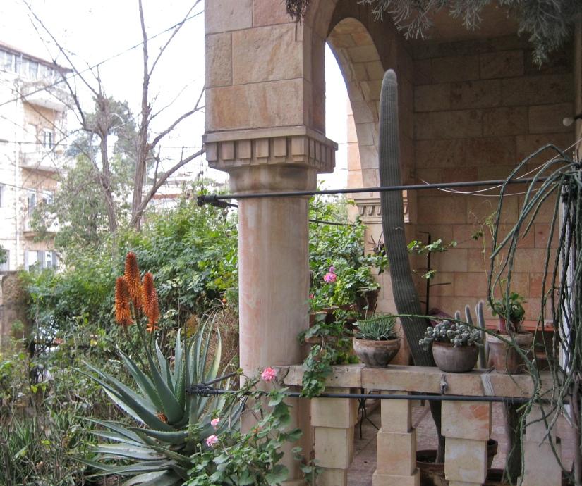 Tuesday's Terrace
