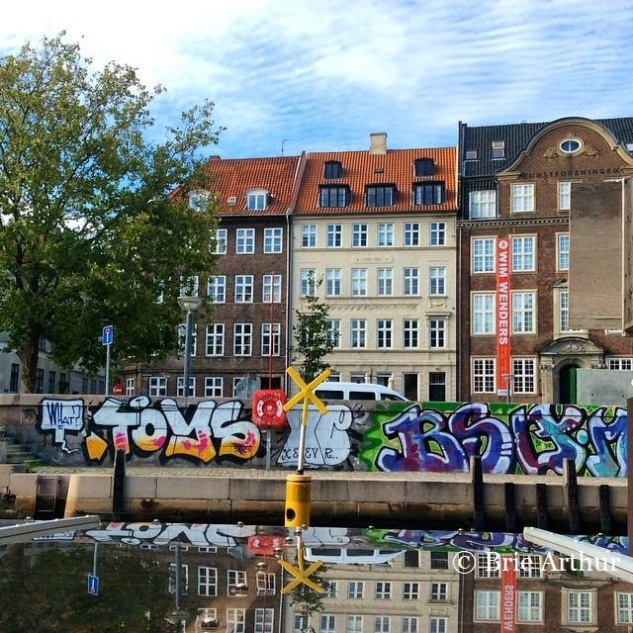 Copenhagen hosted the IPPS international conference , which Brie attended as the Southern Region IPPS representative,.