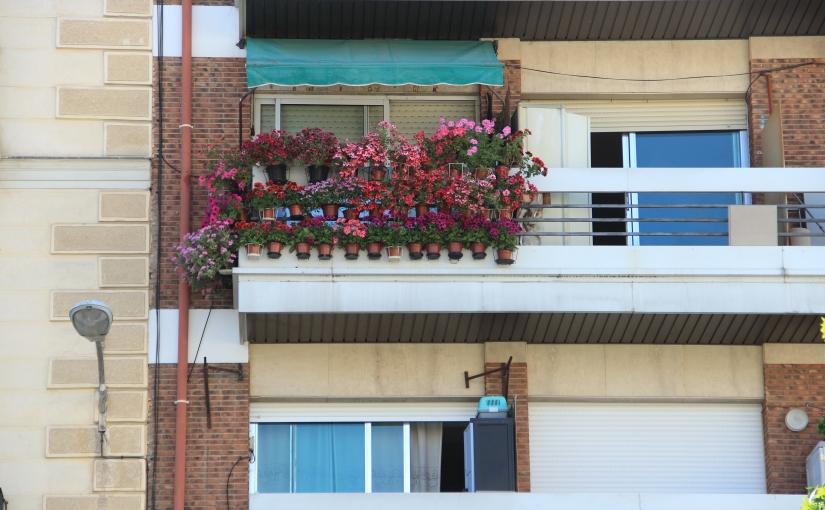 Tuesday's Terrace: Spain