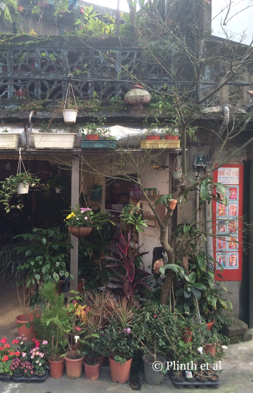 Tuesday's Terrace: Plant Shopfront in Jiufen (九份)