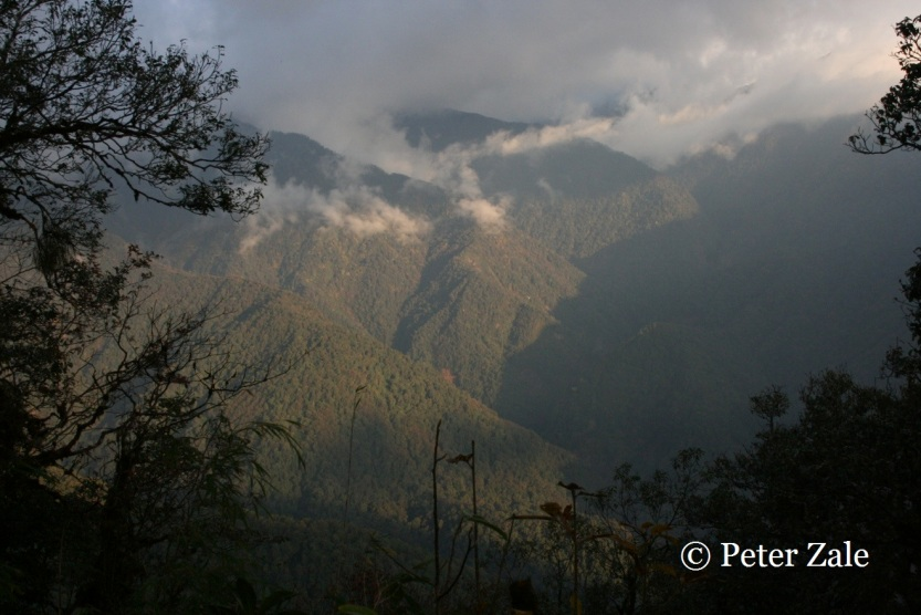 A view of the imposing Himalayan range in Northern Myanmar on our ascent to Phongun Razi.