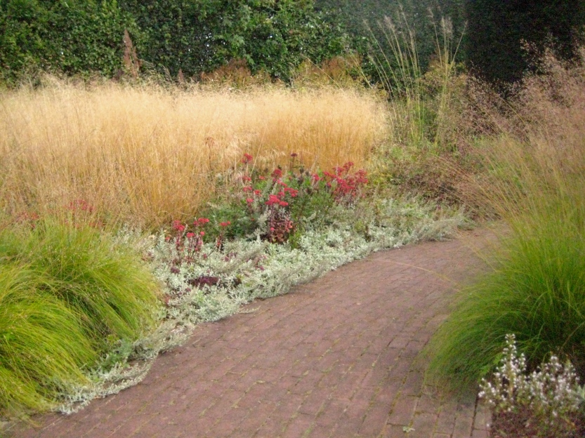 Hummelo, Grass Groupings Along Path, Piet Oudolf