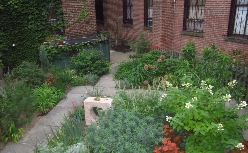Tuesday's Terrace: Brooklyn