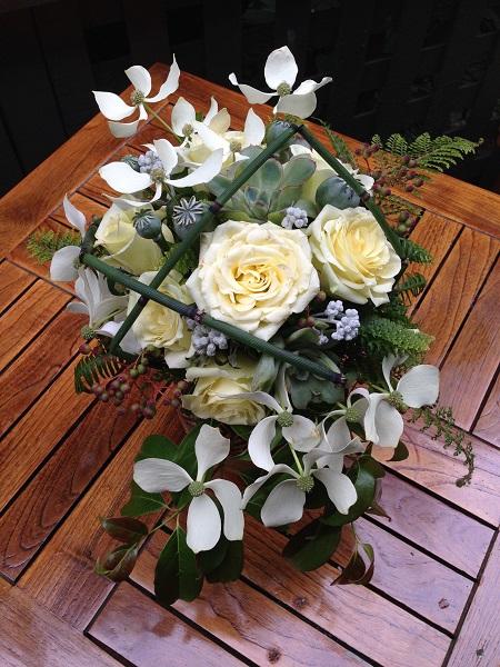 Rosa hybrid unknown Equisetum hyemale Cornus elliptica Papaver somniferum pods Jacobaea hybrid flowering buds Echeveria sp. Sorbus forrestii fruit Polystichum setiferum 'Plumoso-Multilobum' Blechnum spicant