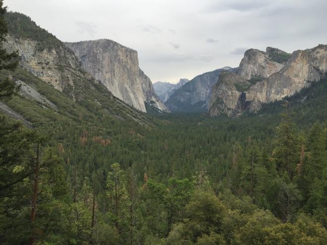 Yosemite_2015_ - 5