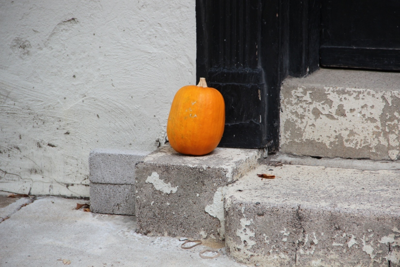 """""""I would rather sit on a pumpkin…"""""""