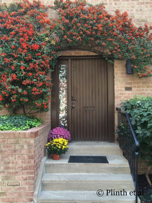 Tuesday's Terrace: Autumn Cheer from Firethorn, Philadelphia,PA