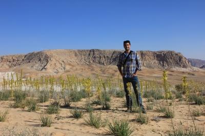 with Asphodeline lutea in the Southern Highlands, Jordan'