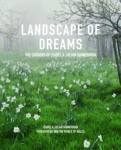 landscape-of-dreams-197550-800x600