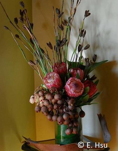 Floral Fridays: AntipodeanArrangement